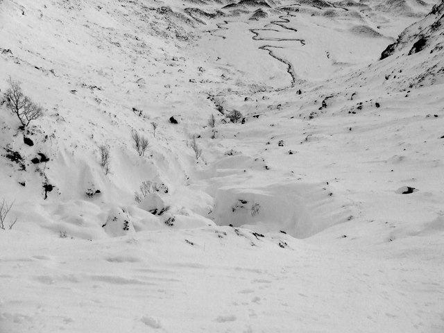 Corrie Fee in black and white