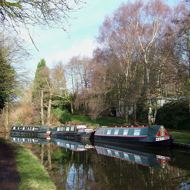 Boats and Birch Trees, near Ashwood, Staffordshire