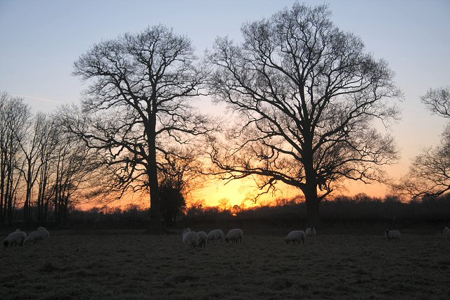 Sunset across fields at Little Saxham