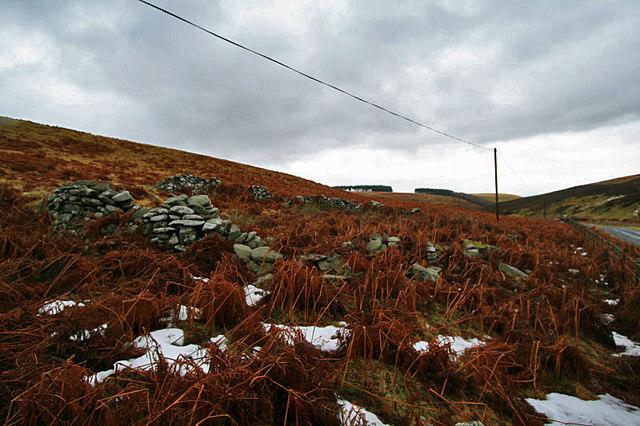 Stone ruin, near to Dunside