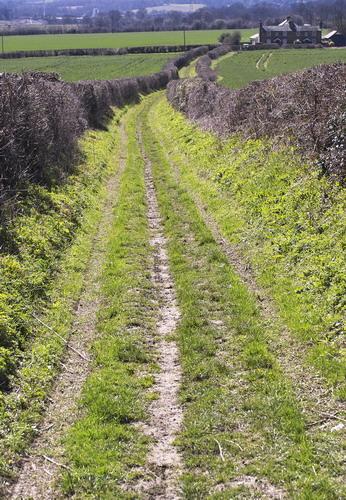 Wrotham Footpath
