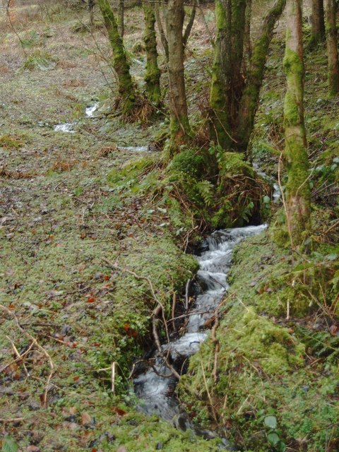 Hillside Burn near High Auldgirth