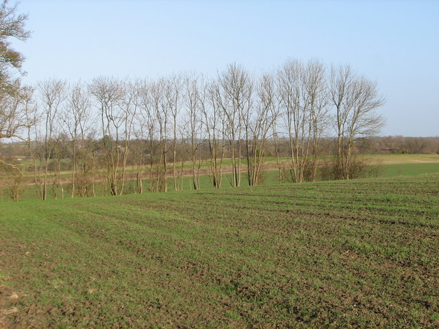 Farmland north of Claypit Hill looking towards Toft