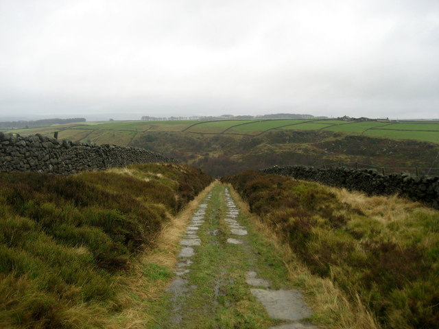 Flagged Track leading to Newsholme Dean