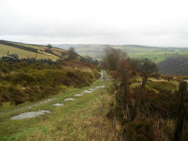 Track descending into Newsholme Dean