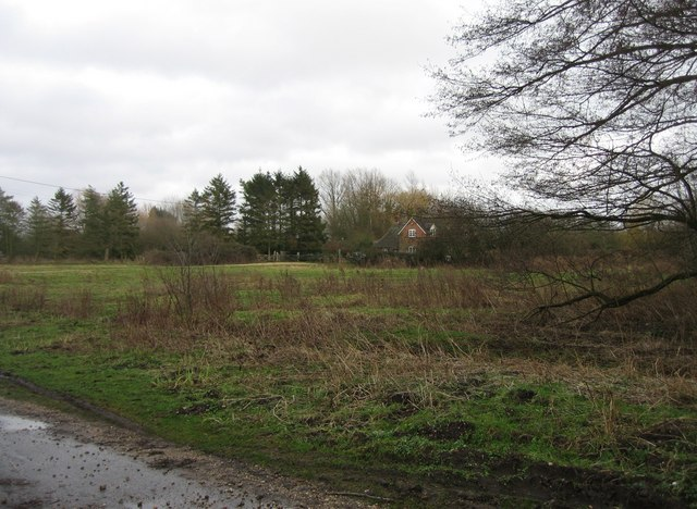 Warnborough Green