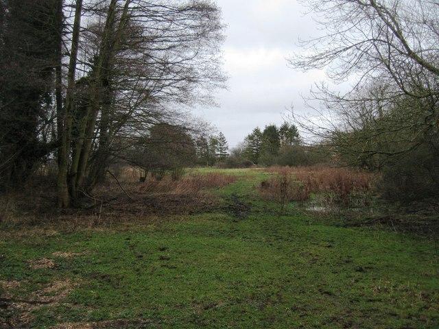Warnborough Green - Access land