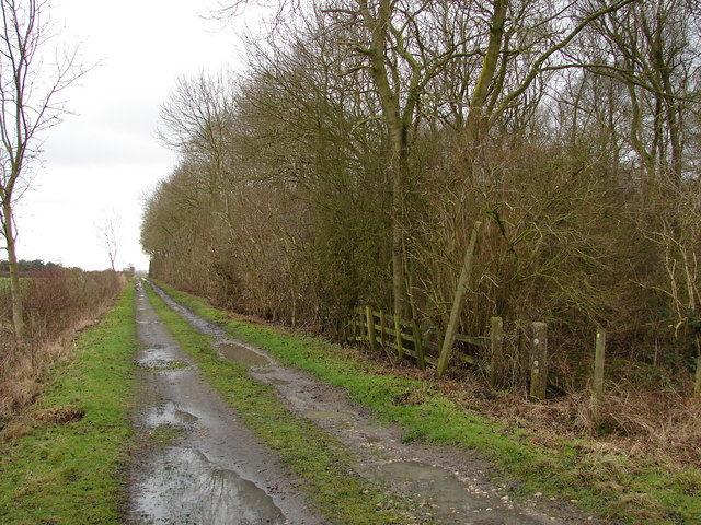 Farm Track Behind Lodge Farm