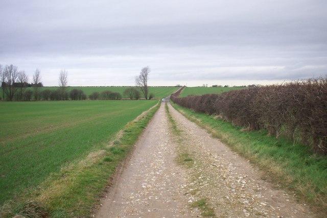 Looking South on Bridleway