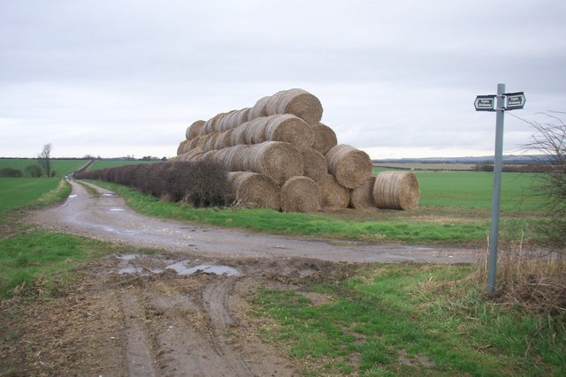Bales of Hay looking North