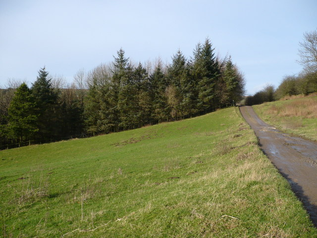 Track & Bridleway south east of Lealholm