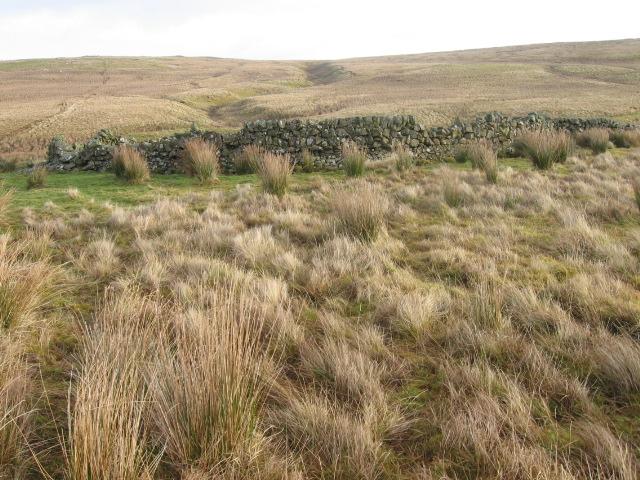 Sheepfold below Brown Hill
