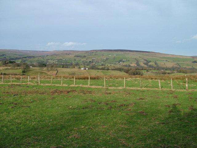 Fields south of Mickleton