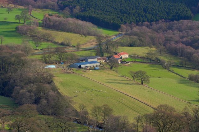 Feather Holm Farm
