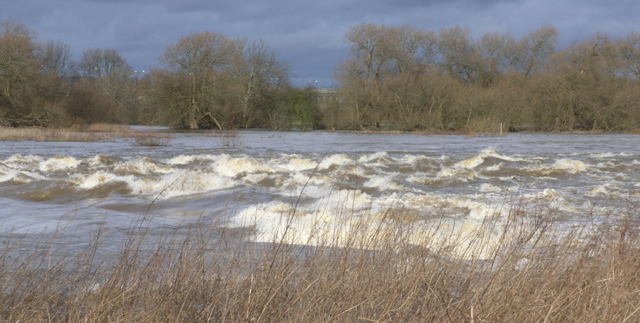 Sawley Weir in flood