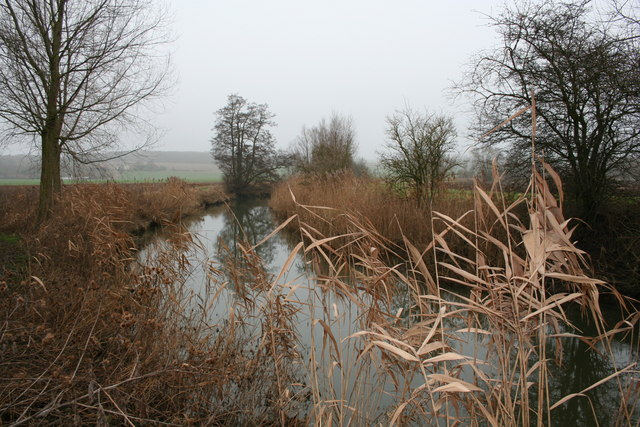 River Stour near Wormingford