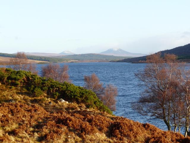 Loch Naver, looking East
