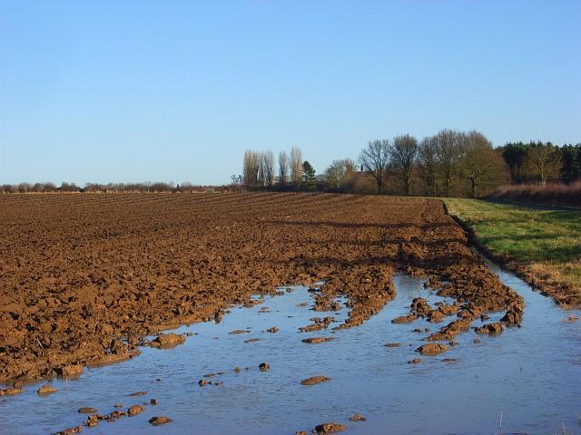 Farmland, Prescote