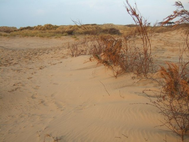 Dunes at Formby