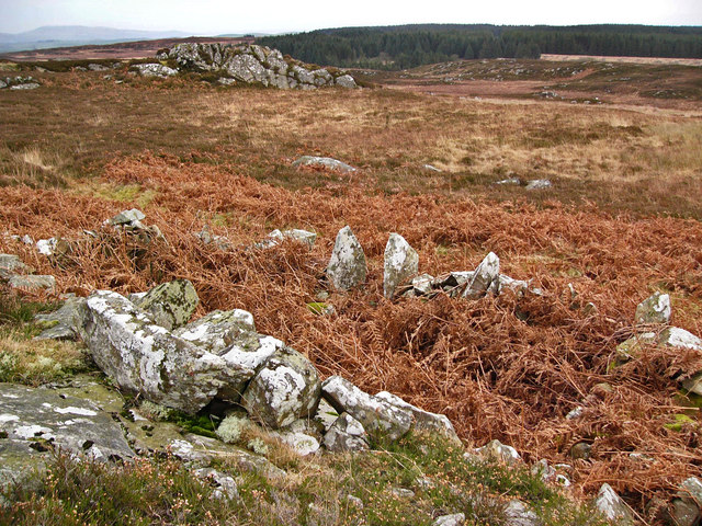 Hut remains on Craiglarie Fell