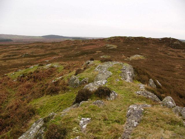 Craiglarie Fell from the northeast