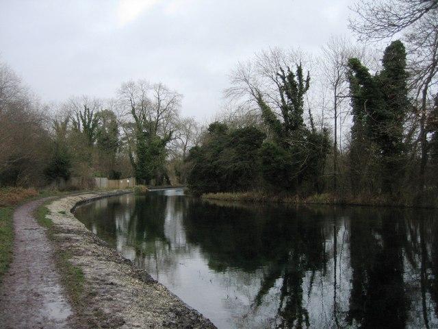 Turning pool - Basingstoke Canal.