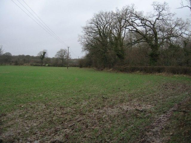 Sodden farmland