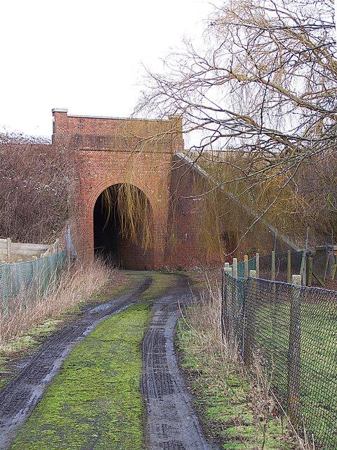 Farm track under railway