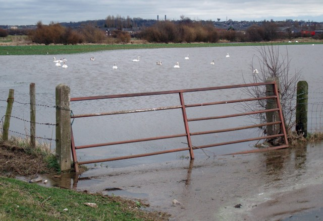 Winter floods, Whitwood Mere