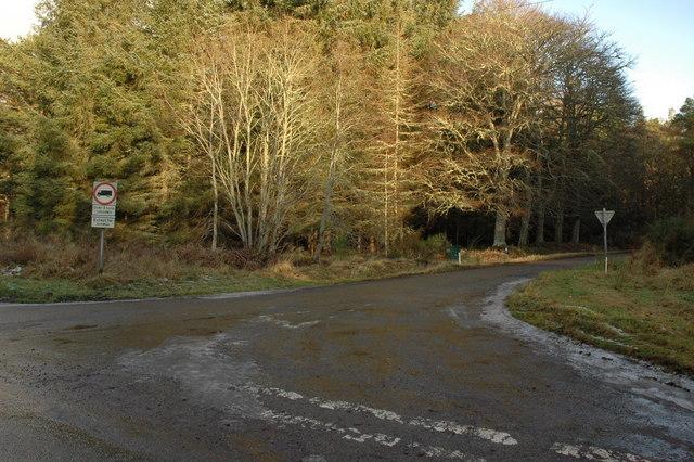 Crossroads in Bellton Wood