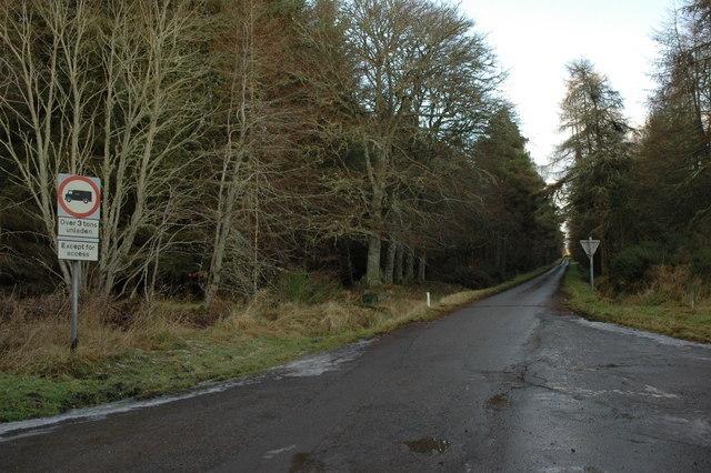 Minor road through Bellton Wood