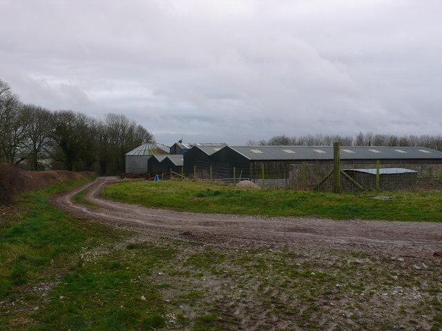 Piggery near Piddletrenthide