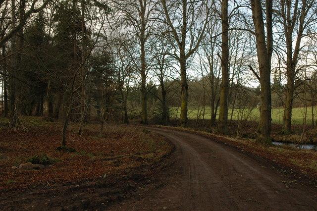 Track in Rosehaugh Estate