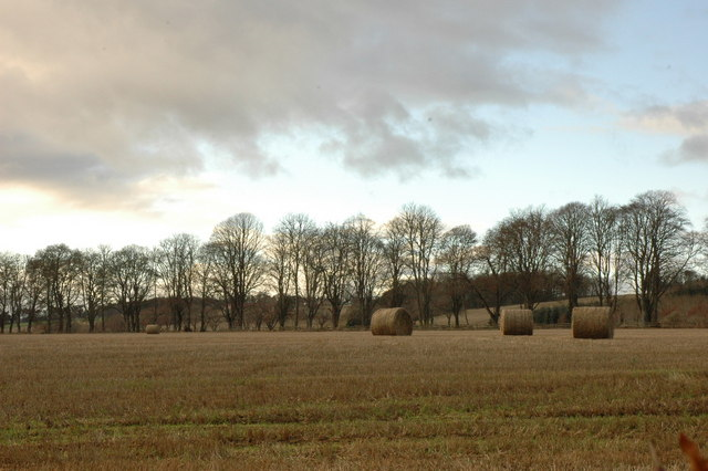 Fields in Rosehaugh Estate