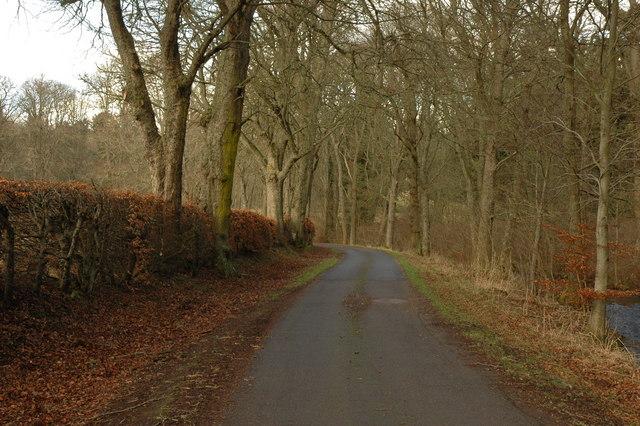 Road through Rosehaugh Estate