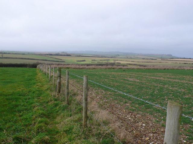 Farmland near Dewlish