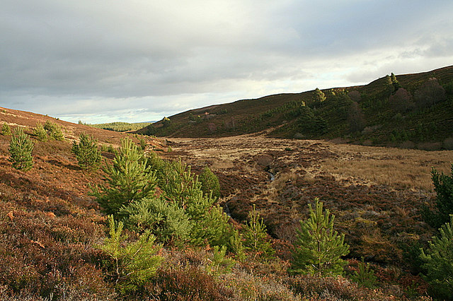 Eastwards along the Burn of Cose