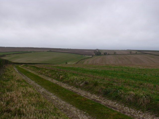 Farm track leading to The Bungalow near Cheselbourne