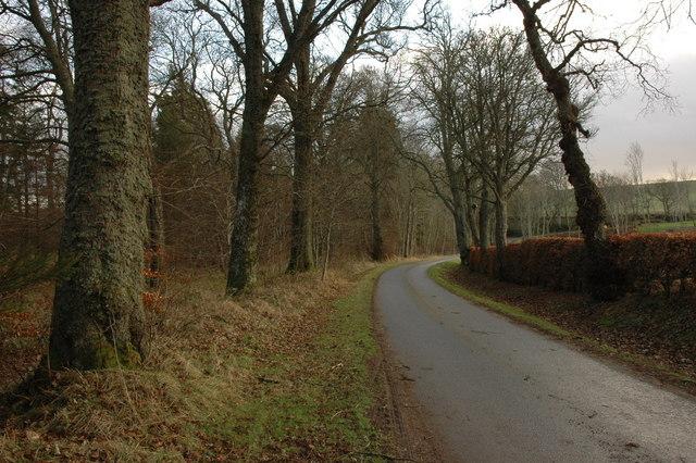 Rosehaugh Estate road