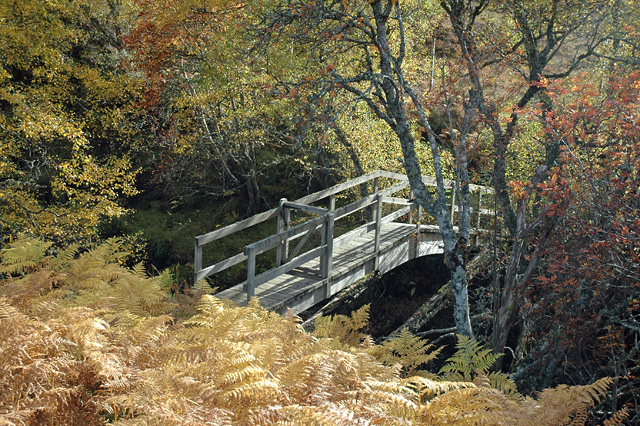Bridge over Garbh Allt