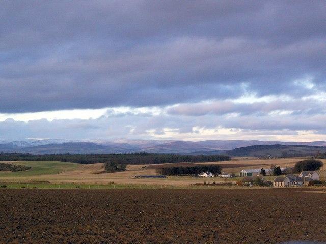 Countryside near Drowndubbs, Angus