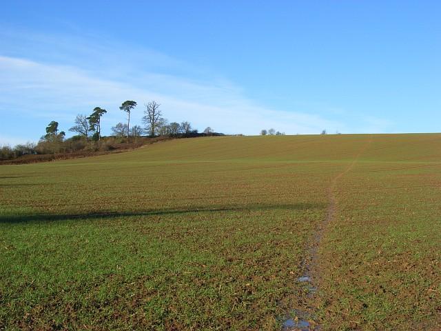 Farmland, Avon Dassett