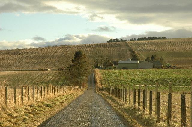 Farm road to Burnside Farm