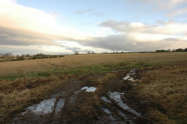 Fields near Udale Farm