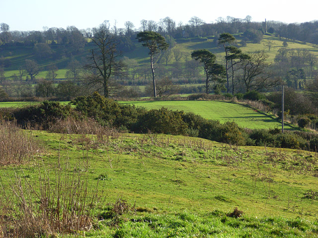 Farmland and copse, Avon Dassett