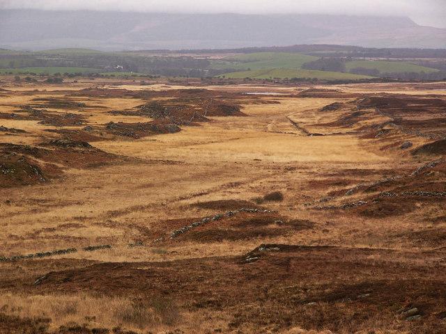 Craigeach Moor from Craiglarie Fell