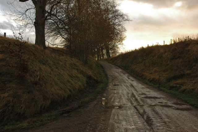 Farm road to Braelangwell