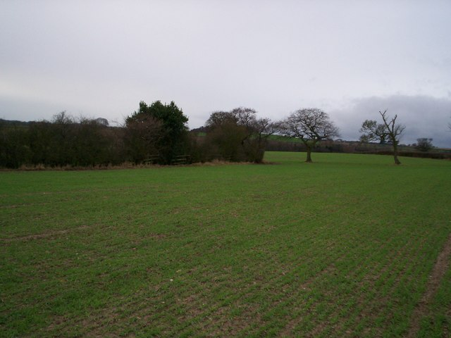Cocks-hut Hill from the Centenary Way
