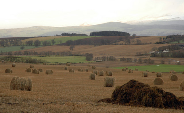 Fields, looking towards Cullicudden