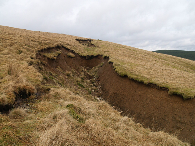 Eroded gully, Baden Hill